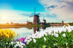 Autonvuokraus Alankomaat