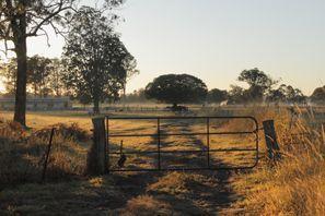 Auton vuokraus Morayfield, Australia