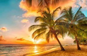 Autonvuokraus Barbados