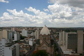 Auton vuokraus Araraquara, Brasilia