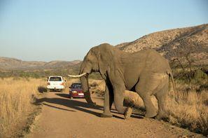 Auton vuokraus Klerksdorp, Etelä-Afrikka
