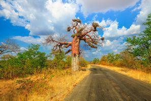 Auton vuokraus Makhado, Etelä-Afrikka