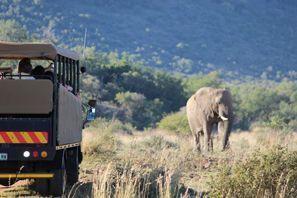 Auton vuokraus Vryburg, Etelä-Afrikka