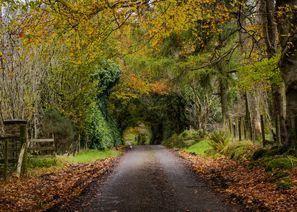 Auton vuokraus Omagh, Pohjois-Irlanti